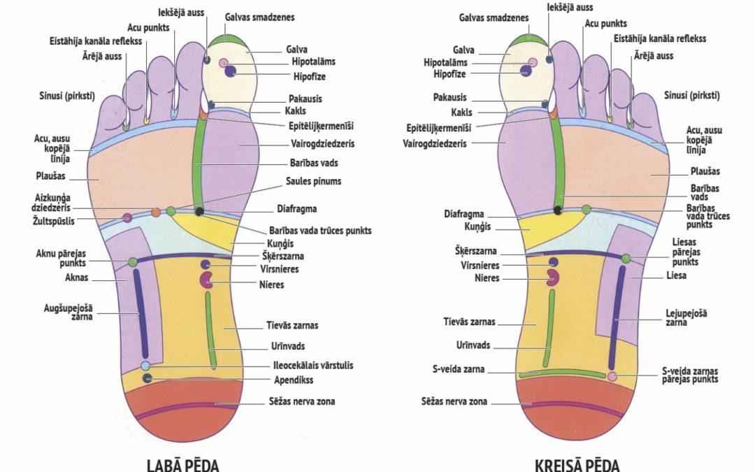 Pēdu, plaukstu un sejas refleksoterapija